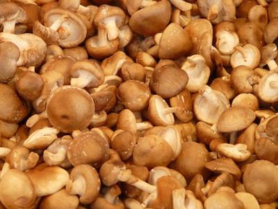 shiitake-mushroom 400x300